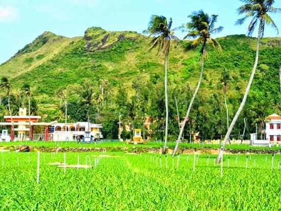 Lý Sơn đang chọn du lịch làm mũi nhọn gắn với nông nghiệp, ngư nghiệp.