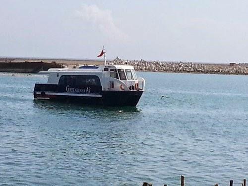 Tàu Greenlines-A1 tại vũng neo đậu Lý Sơn
