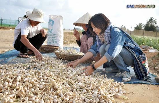 Khách đến với Lý Sơn ngoài việc tham quan những cảnh đẹp còn được trải nghiệm cuộc sống trồng hành, tỏi cùng người dân tại đảo