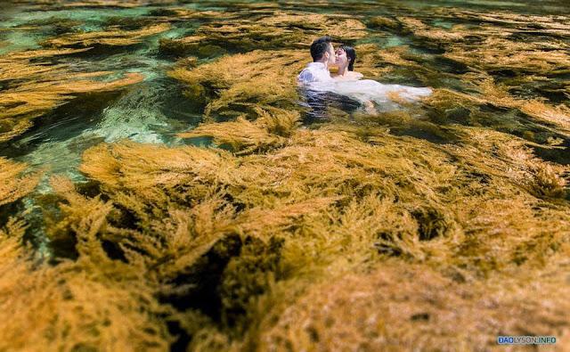 Bộ ảnh cưới dưới nước tại Đảo Lý Sơn
