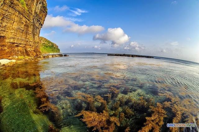Hang câu nước trong veo, có thể nhìn thấy san hô và cỏ biển dưới đáy nước