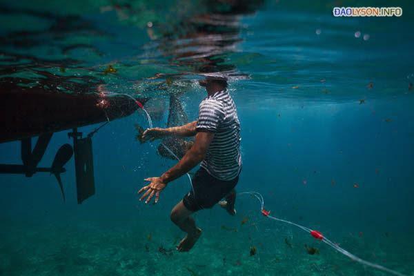 Một ngư dân trẻ nhảy xuống nước để gỡ lưới rối của mình ở gần đảo Lý Sơn. Áp lực từ tàu tuần tra Trung Quốc đã buộc các ngư dân địa phương làm việc gần bờ, tàn phá quần thể cá gần bờ biển Việt Nam.