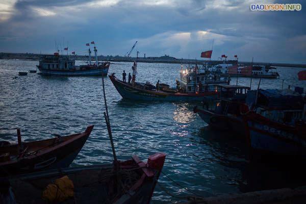 Các tàu đánh cá Lý Sơn từ ngoài biển trở về lúc bình minh