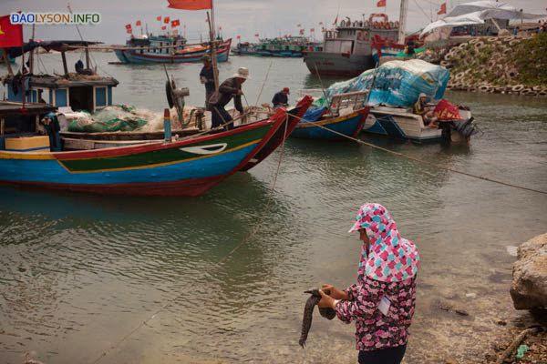 Một người phụ nữ làm cá dọc bờ biển Lý Sơn