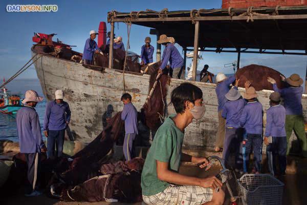 Các công nhân chuyển lưới ra khỏi tàu để sửa chữa tại các bến cảng của đảo Lý Sơn