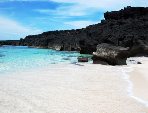 Du lịch trải nghiệm trên Đảo Lý Sơn - hình 0