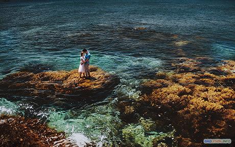 Cặp đôi trẻ tạo dáng trên bãi tảo biển