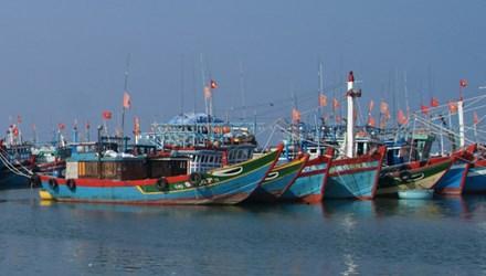 Các phương tiện công suất lớn được đề nghị cấm đánh bắt ven đảo