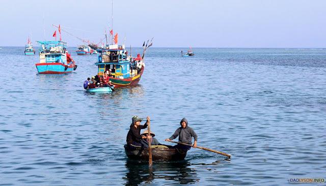 Cá tươi được chuyển vô Cảng bằng thúng