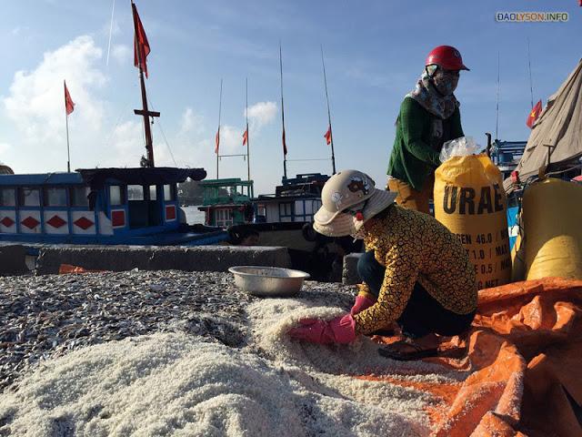 Một số loại cá được người dân ướp muối sau khi mua