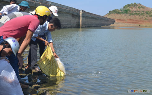 Thả cá giống xuống hồ chứa nước Thới Lới, góp phần tái tạo nguồn lợi thủy sản trên đảo.