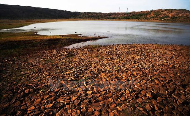 Hồ Thới Lới( Lý Sơn) nứt nẻ, khô cằn do thiếu nước.
