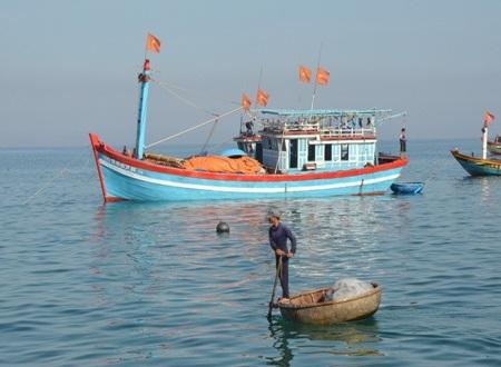 Nghề lưới cào đang tận diệt hải sản ven đảo Lý Sơn