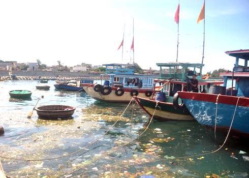 Hệ thống xử lý rác thải không có, buộc người dân Lý Sơn phải đổ rác xuống biển, gây hại môi trường trầm trọng.