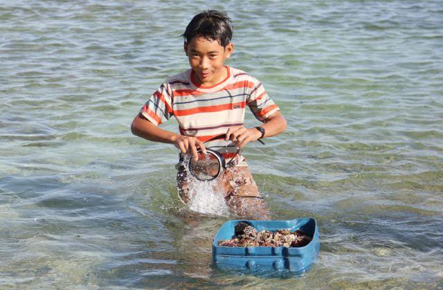 Đảo Lý Sơn - Thợ lặn nhí trổ tài trên biển - Hình 7