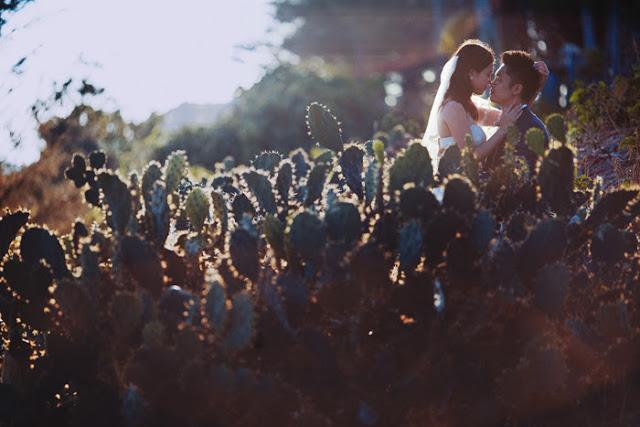 Trọn bộ ảnh cưới đẹp lung linh của cặp đôi Hà Thành trên đảo Lý Sơn - Hình 8
