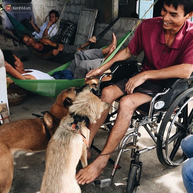 Những chú chó đảm nhận công việc kéo xe đưa chủ của mình đi khắp đảo.