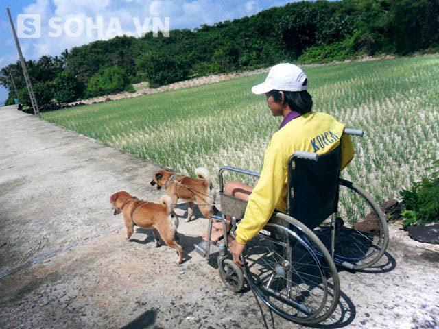 Hình ảnh 2 chú chó kéo xe chở anh Hậu trên đường