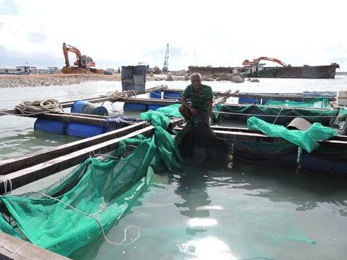 Đảo Lý Sơn bị thiệt hại nhiều tỷ đồng sau bão số 3 - Hình 2