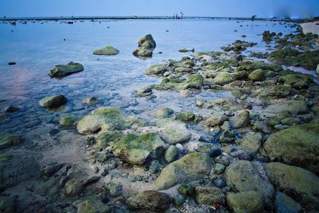 Bãi biển xanh đến ngỡ ngàng ở đảo Lý Sơn.