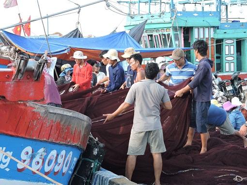 Diện mạo nông thôn mới ở xã An Hải - Hình 1