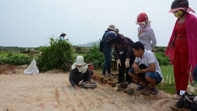 Du khách tham quan, học cách trồng tỏi