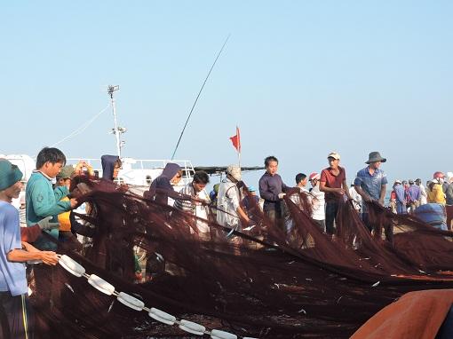 Lý Sơn: Phát huy thế mạnh kinh tế biển - Hình 1