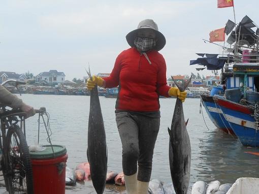 Lý Sơn: Phát huy thế mạnh kinh tế biển - Hình 3