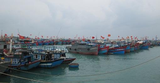 Vũng neo trú tàu thuyền An Hải - Điểm trú ẩn an toàn cho ngư dân - Hình 2