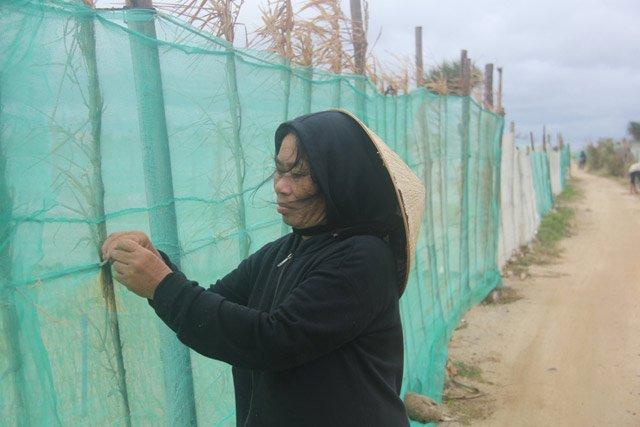 Người dân đang kiểm tra để gia cố lại lưới chắn cho ruộng tỏi của gia đình.