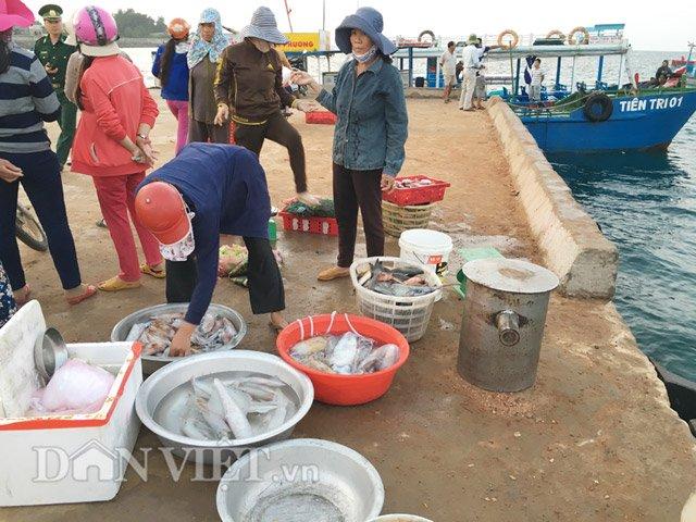 Hải sản ngư dân đưa về bán khá phong phú, với đủ loại mực, cá - Hình 6