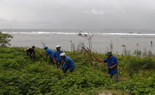 Ngay sau Lễ phát động, các đại biểu và ĐVTN đã ra quân trồng 6000 cây dương liễu phủ xanh 1ha khu vực bãi biển gần Chùa Đục và thôn Đồng Hộ (thuộc xã An Hải)
