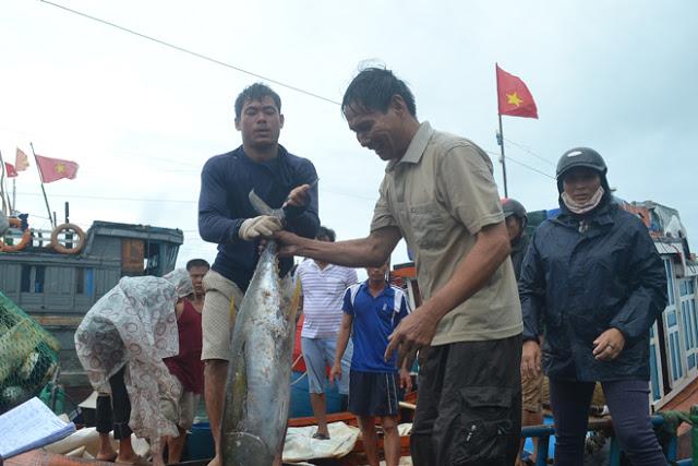 Khai thác hải sản vẫn là thế mạnh của huyện đảo.