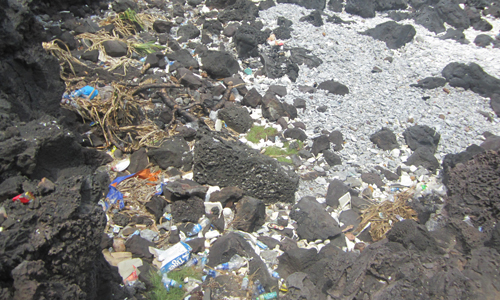 Bao nilon, chai nhựa, thùng xốp và cả than củi… là những thứ dễ dàng nhìn thấy bất cứ nơi đâu quanh đảo Bé (Ảnh: Vinh Thông)