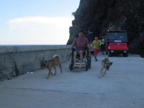 Hai chú chó cùng anh rong ruổi khắp những con đường trên đảo