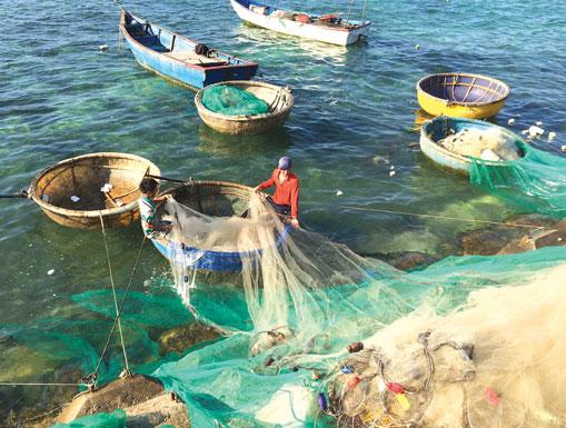 Ngư dân huyện đảo Lý Sơn giặt lưới chuẩn bị cho chuyến vươn khơi bám biển.