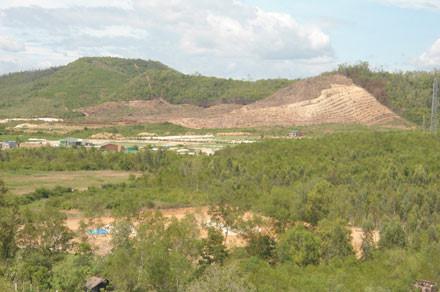Người dân xã Vạn Hưng, huyện Vạn Ninh, Khánh Hòa san đồi trồng tỏi Lý Sơn khi chưa có đề án cụ thể. Ảnh: Nhiệt Băng