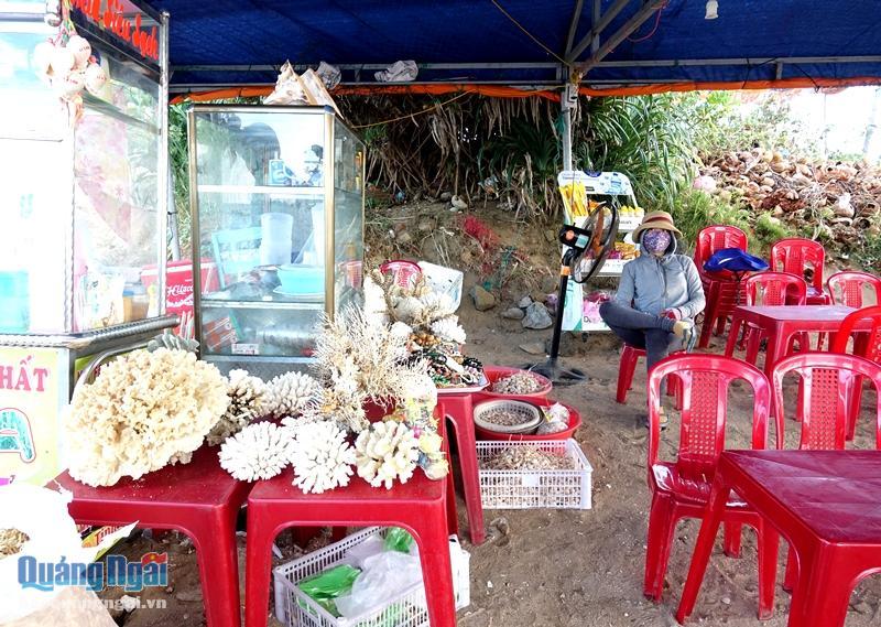 San hô được bày bán công khai tại các lều quán ở các điểm du lịch.