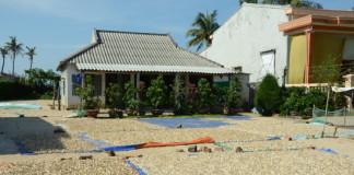 Những ngôi nhà hoang sơ trên đảo bị thay thế bằng nhà bê tông kiên cố. Ảnh: Văn Chương