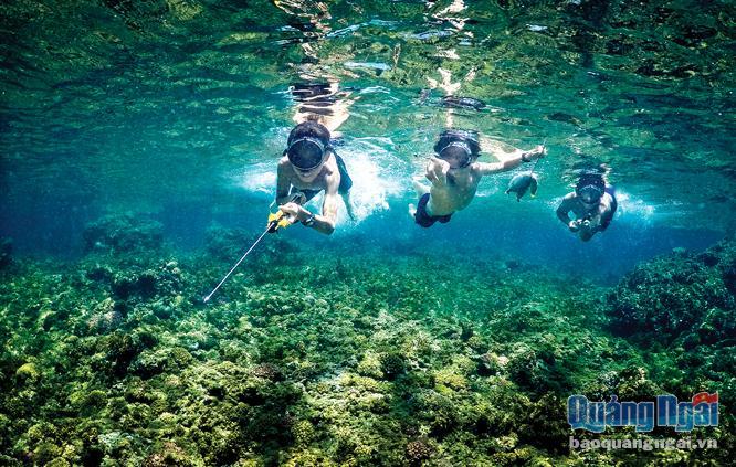 Bãi tắm Bãi Sau ở đảo Bé là nơi lý tưởng để phát triển dịch vụ lặn biển.