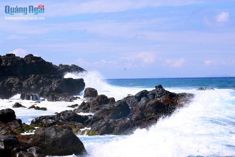 Một góc Khu bảo tồn biển Lý Sơn.