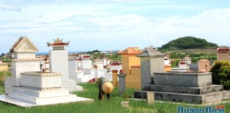 Nhiều ngôi mộ ở đảo Lý Sơn hiện chôn cất xen lẫn trên đất canh tác hành, tỏi.
