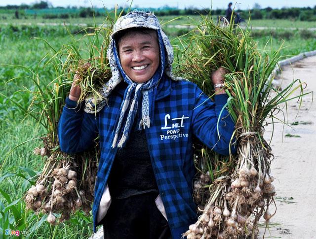 Bà Lê Thị Thu, ngụ xã An Vĩnh (huyện Lý Sơn) vui mừng vì tỏi năm nay vừa được mùa, vừa được giá.