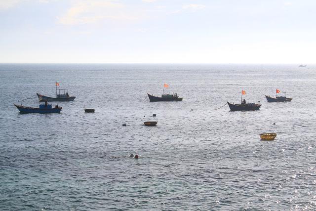Hoạt động đánh bắt gần bờ nằm hoàn toàn trong phạm vi 7.900 ha của khu bảo tồn biển Lý Sơn.