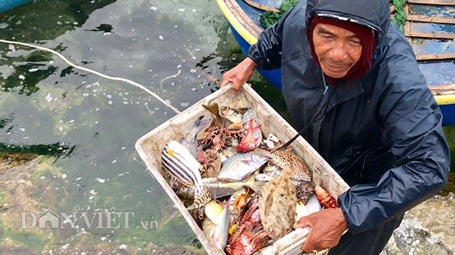 Đưa hải sản đánh bắt được vào bờ để bán