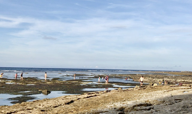Khu vực biển trước Hang Câu khi nước triều rút.