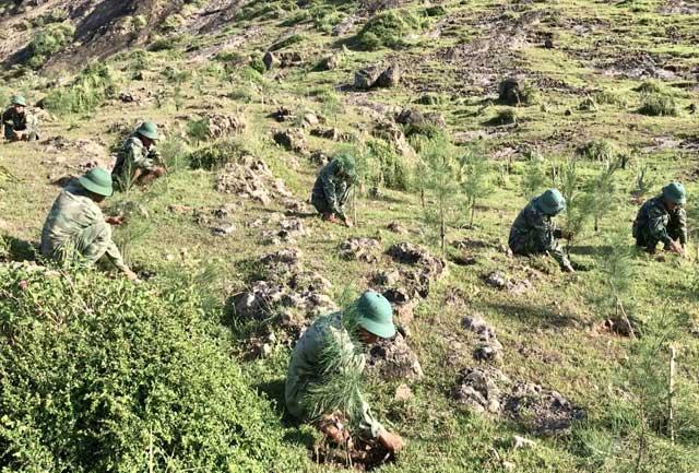 Tranh thủ thời gian rảnh, cán bộ và chiến sỹ Đại đội 1 ra chăm sóc cây trồng trong khu vực mình được phân công.