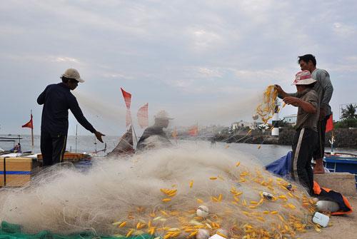 Ngư dân Quảng Ngãi chuẩn bị ngư cụ ra khơi đánh bắt Ảnh: TỬ TRỰC