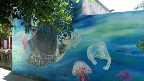 Những bức ảnh về cuộc sống hòa thuận giữa rùa biển và người dân.