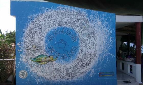 Những bức ảnh về cuộc sống hòa thuận giữa rùa biển và người dân